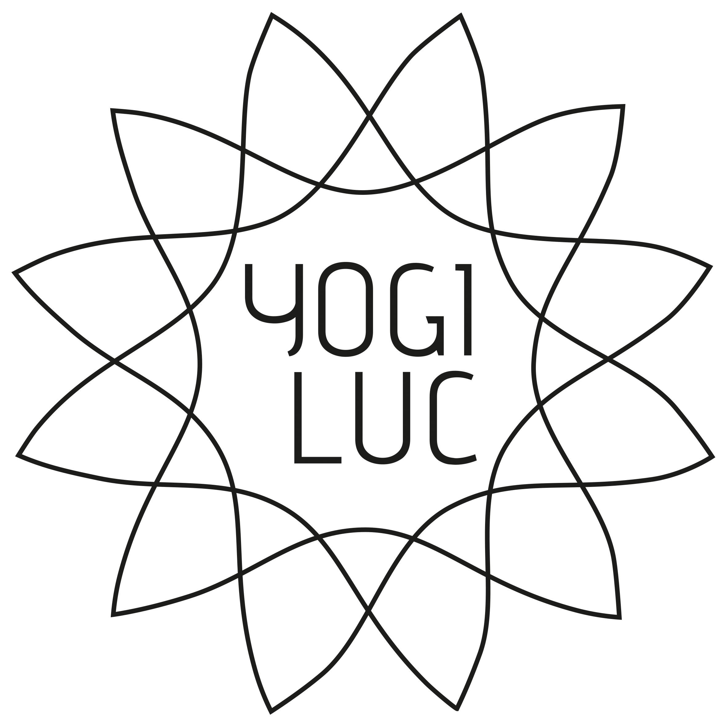 Yogi Luc